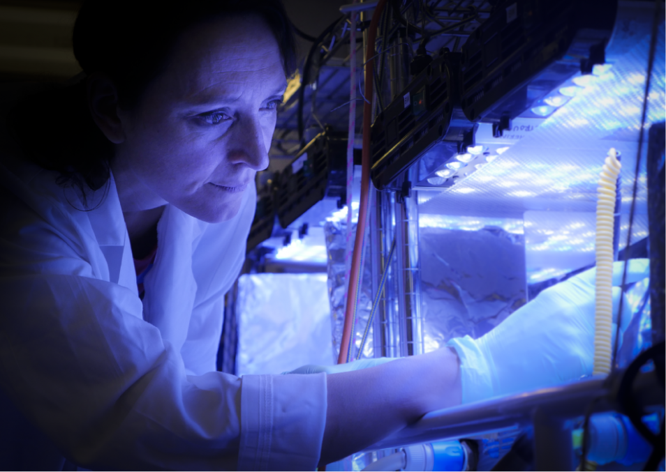 Martina Doblin wearing white gloves and a coat, doing science.