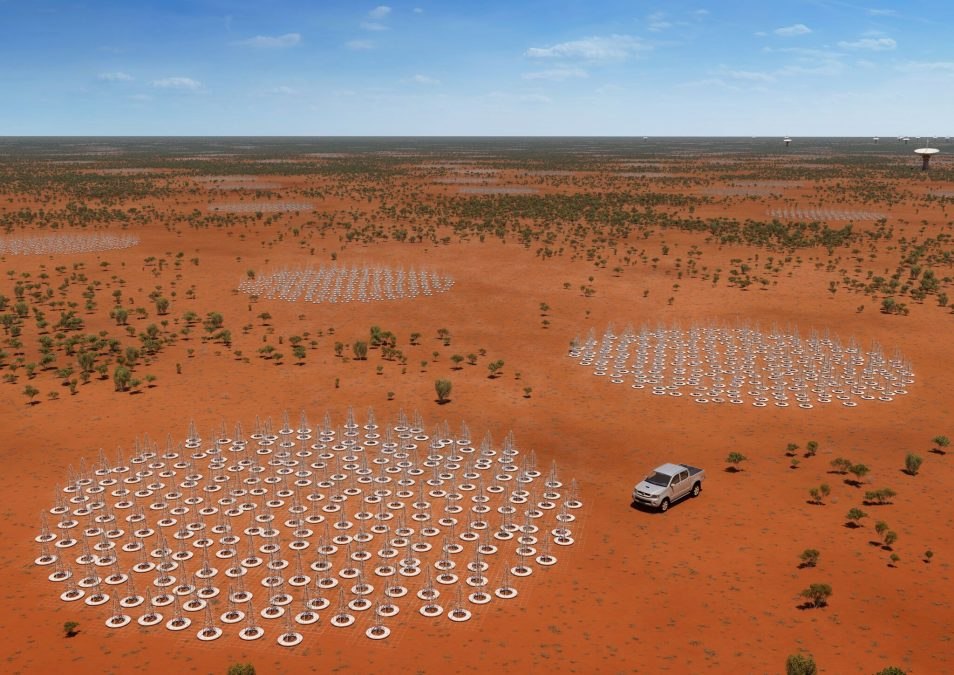 Thousands of small Christmas tree-shaped metal antennas spread across a desert landscape.