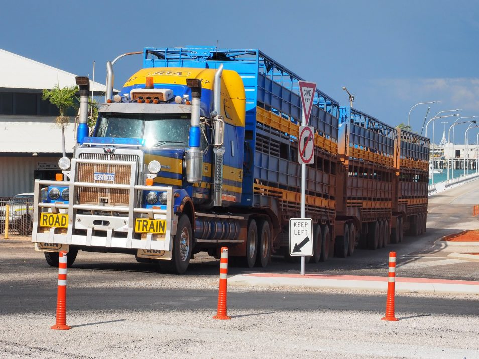 Picture of cattle truck travelling through a city.