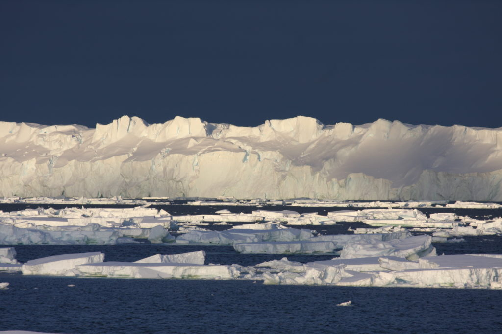 A cliff of ice towers above the ocean, in which broken sheets of ice float.