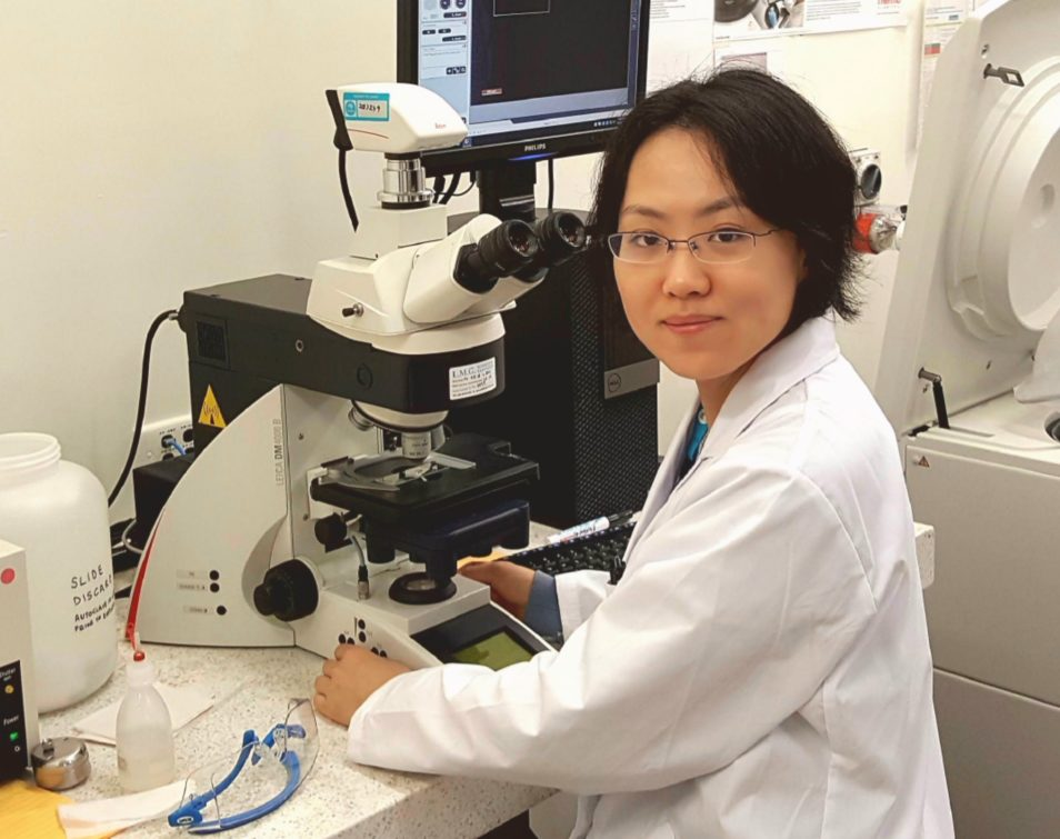 Xiao Deng sitting at a microscope in a laboratory.