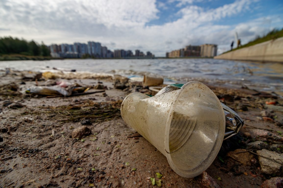 Plastic cup and other waste washed up on shoreline