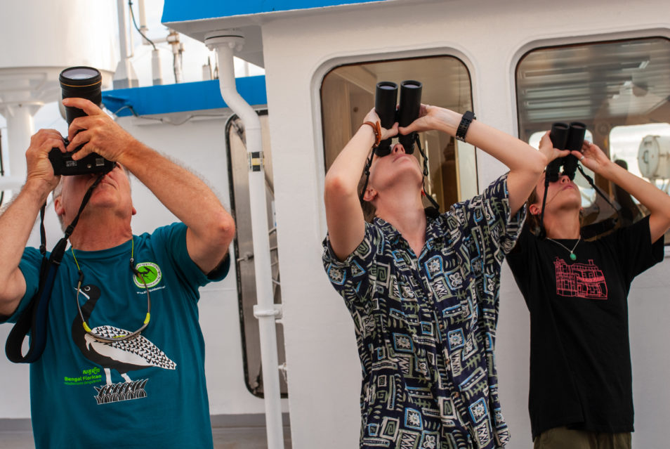 Three scientists in casual clothes looking up in the sky. The one on the left in the blue shirt is taking photos and the one in the middle and right are looking through binoculars.