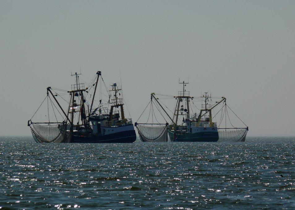 two fishing boats at sea