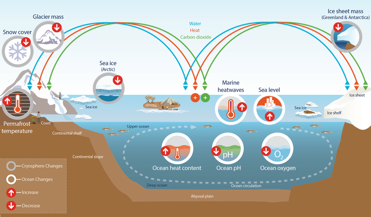 Infographic style image describing changes to the ocean