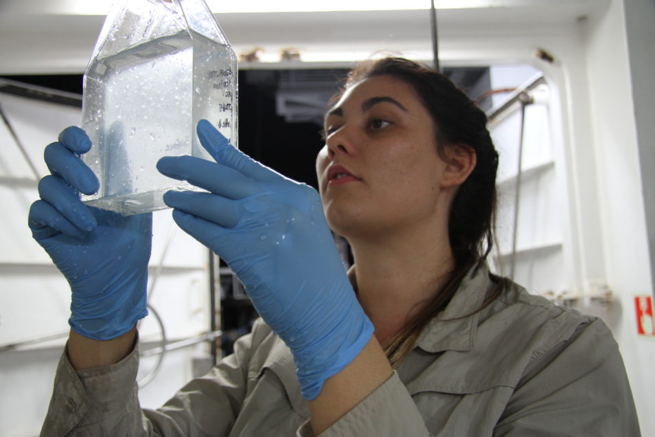 Woman looks into clear container. She is wearing blue gloves and is wearing a khaki coloured top.
