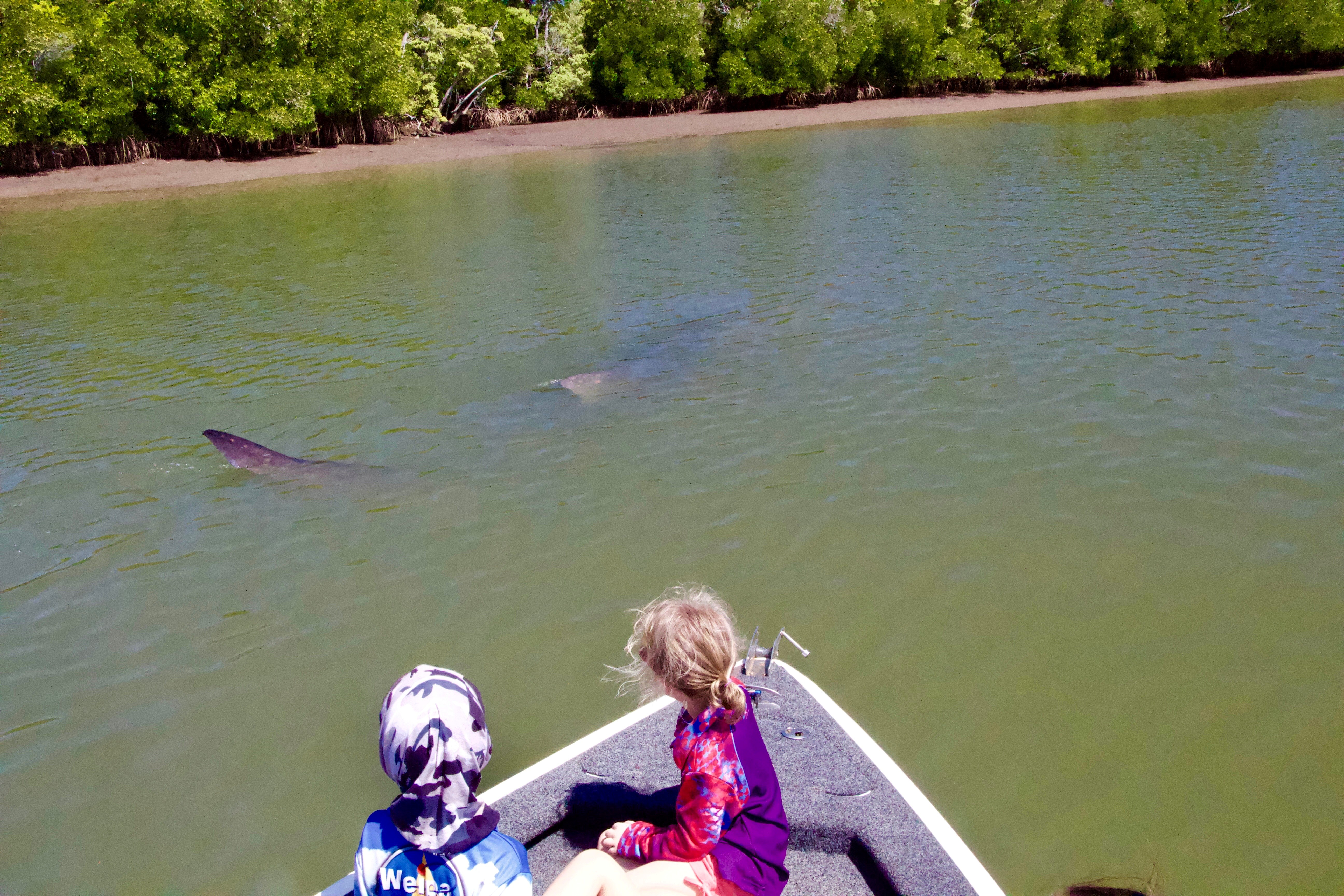 two small children in a boat with a whale shark visible in the river in the background