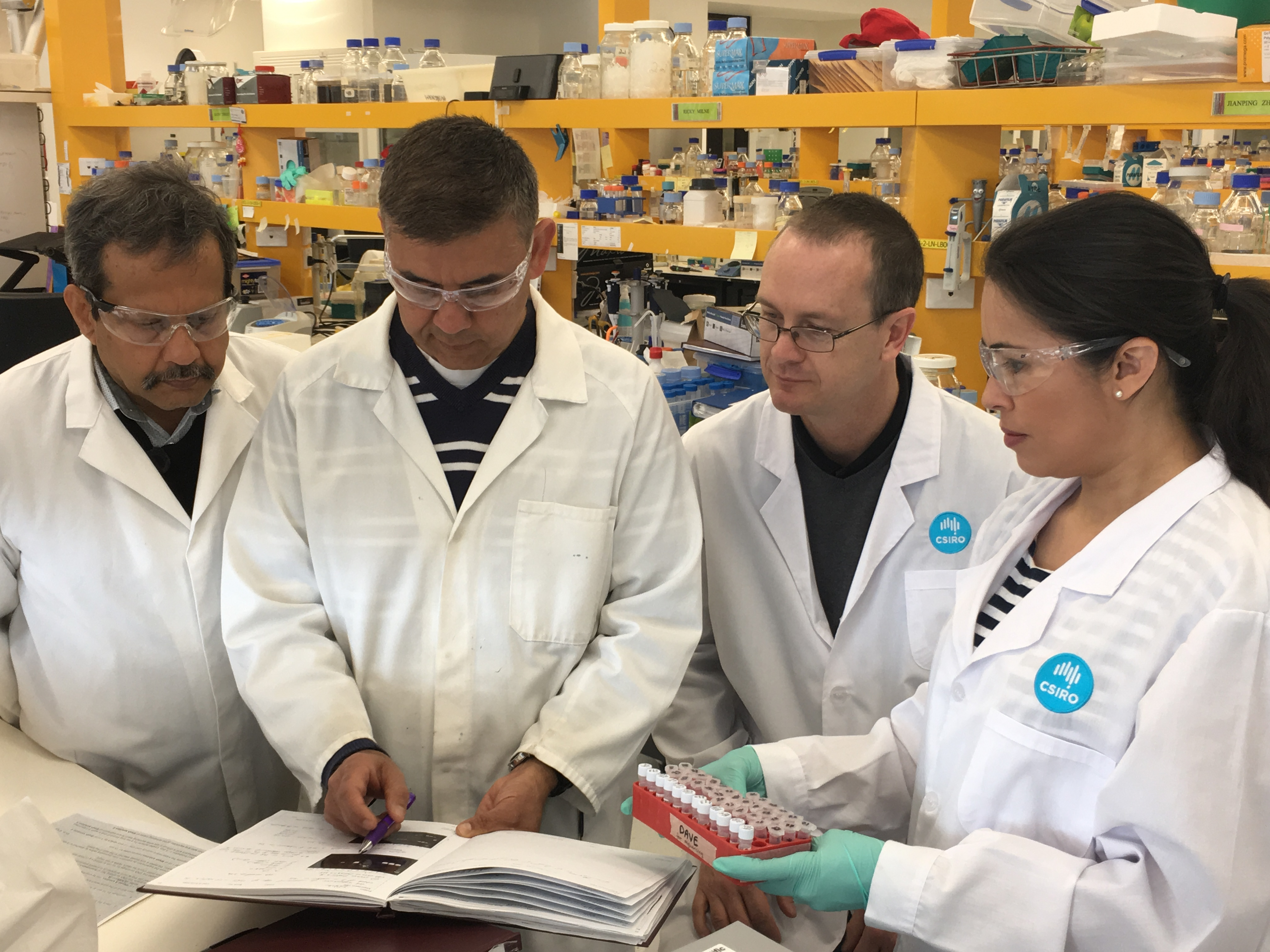 Four scientists in lab coats in a lab looking at a book and some samples in test tubes of cereal rust