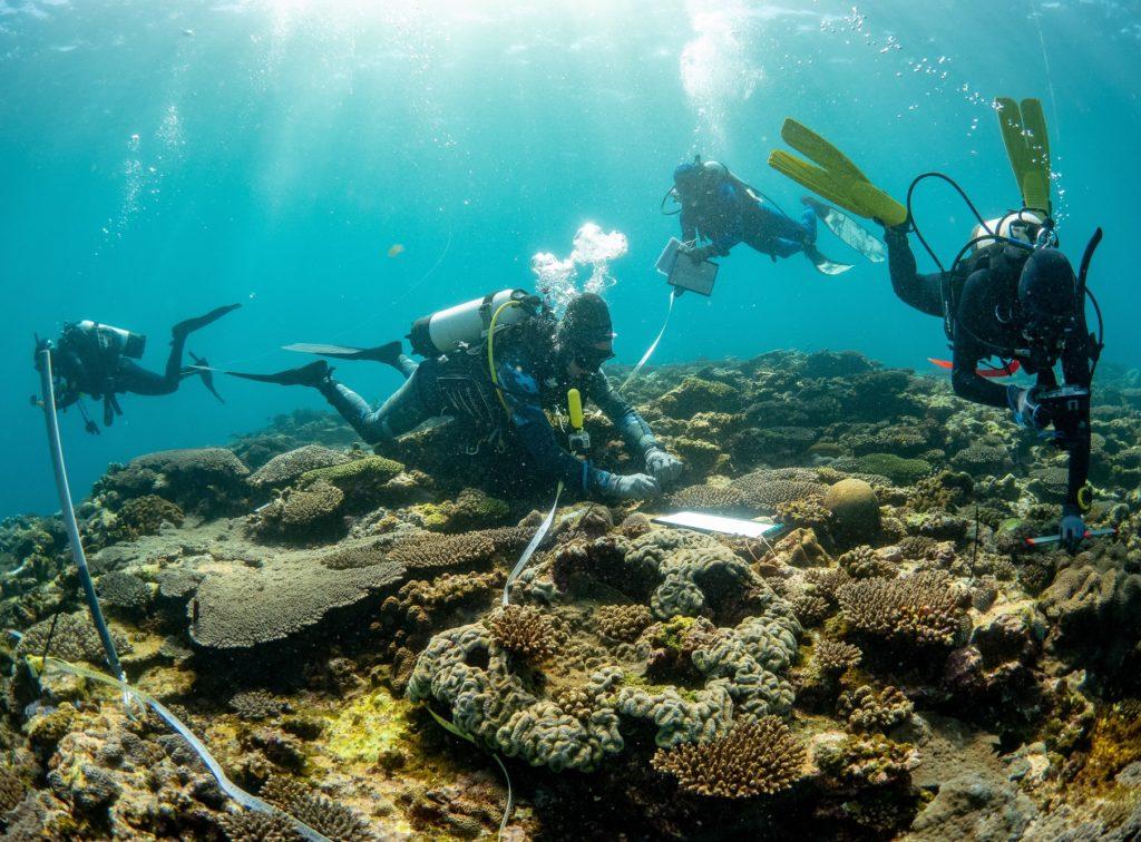 Divers swim near shallow reef to record marine debris