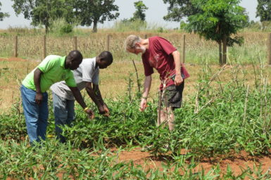 three people standing in a field of cowpeas