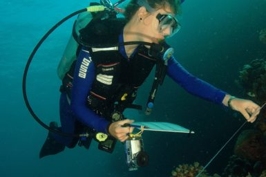 Researcher conducting a coral reef transect survey as part of coral disease research in Indonesia.