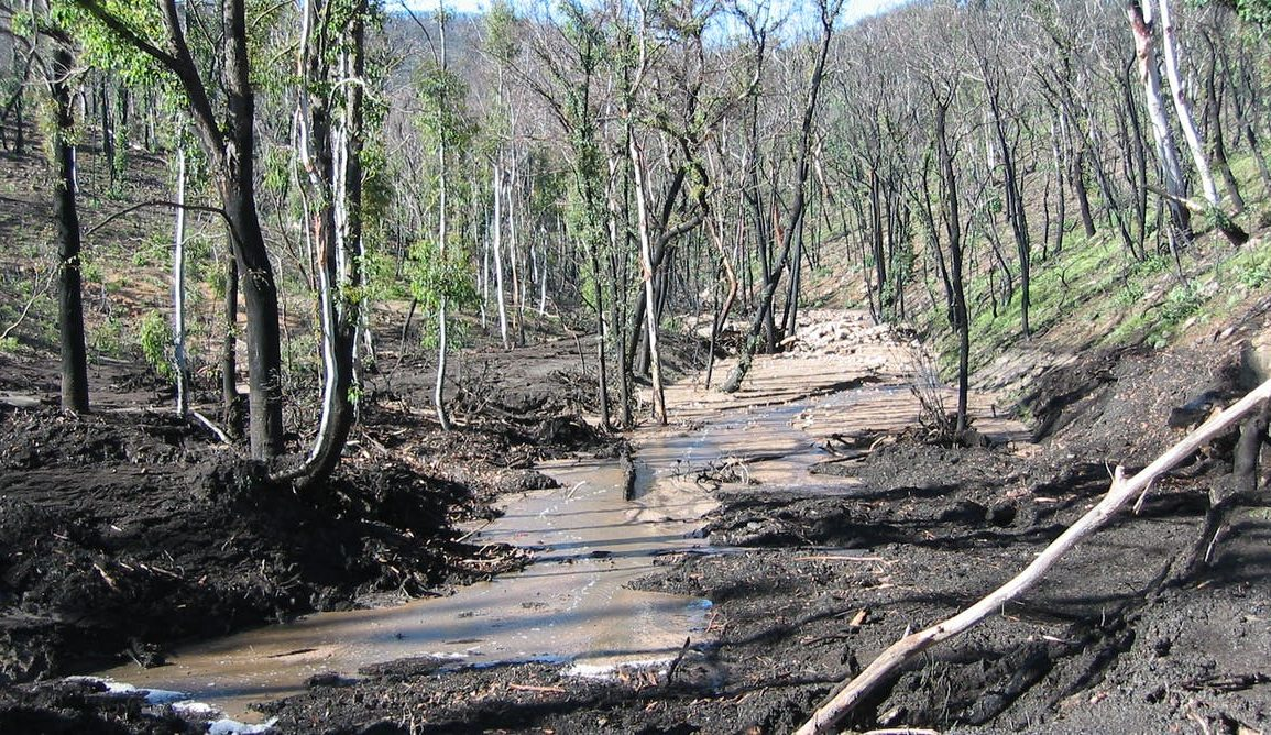 Image of muddy waterway surrounded by burnt trees and land
