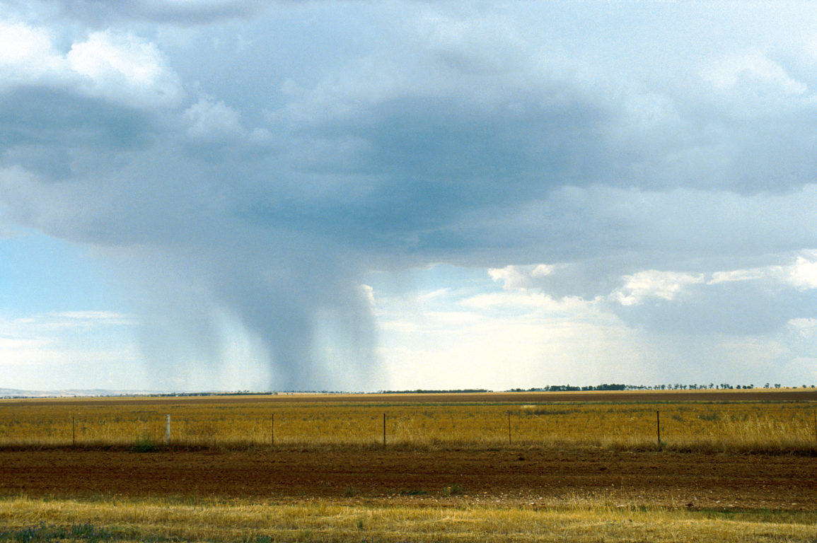 rain falling in the distance over paddocks