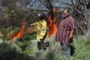 Two men light a fire in the bush