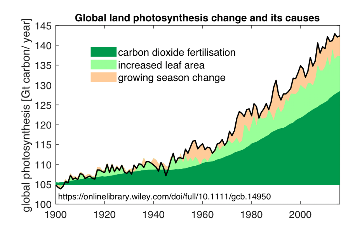 Chart showing global land photosynthesis change and its causes over time. showing an increase