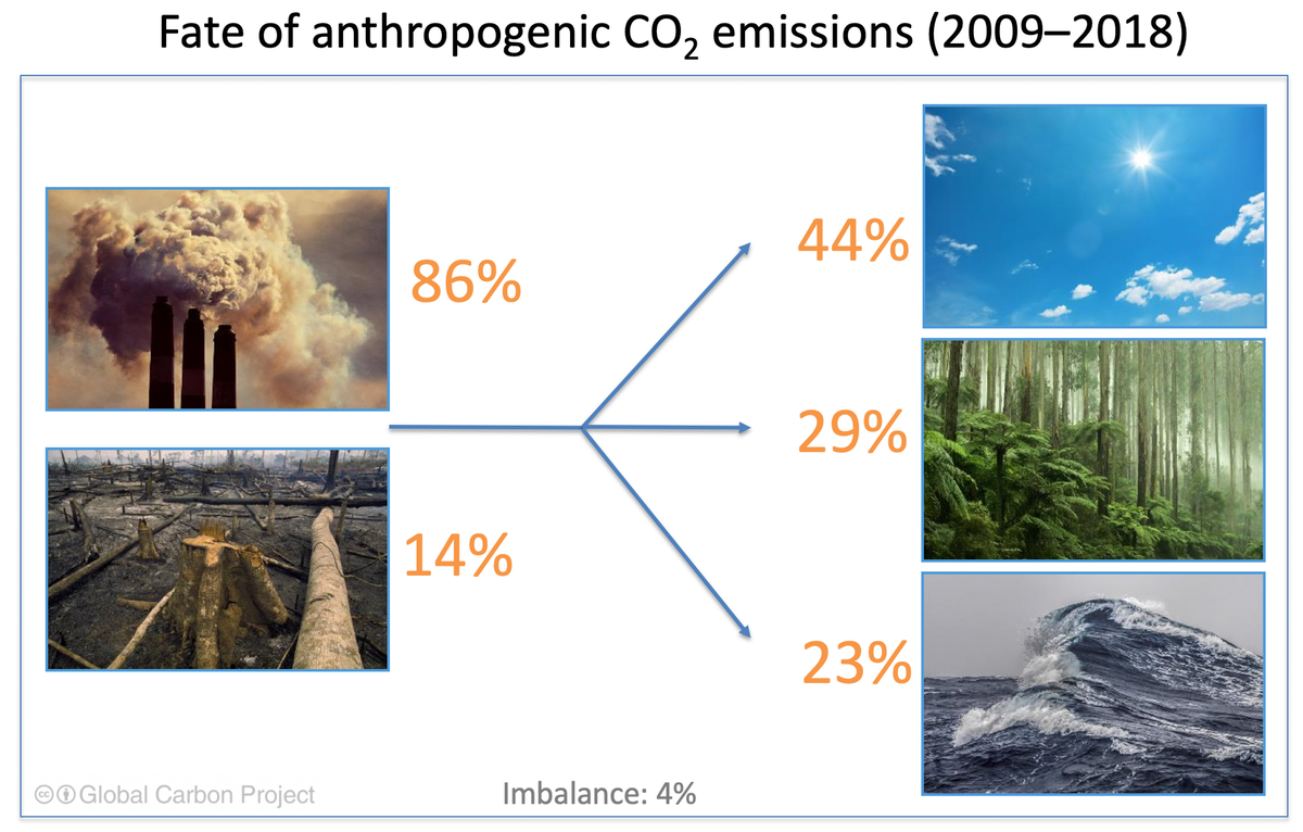 visual showing percentage of carbon emissions by source. 86% from industrial sources, 14% from deforestation. And where it goes: 44% into the atmosphere, 29% in plants and 23% in the ocean. There is an imbalance of 4%