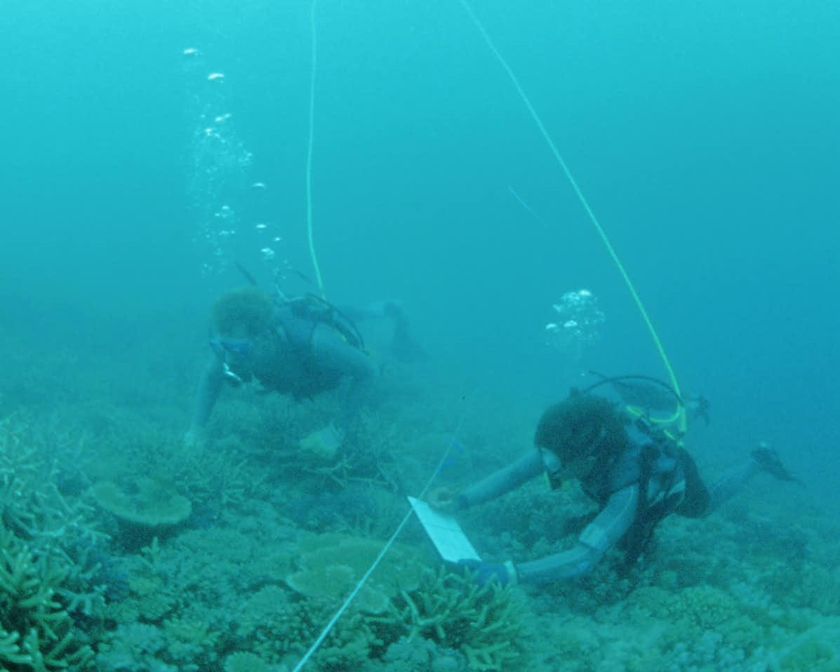 two scuba divers taking notes underwater