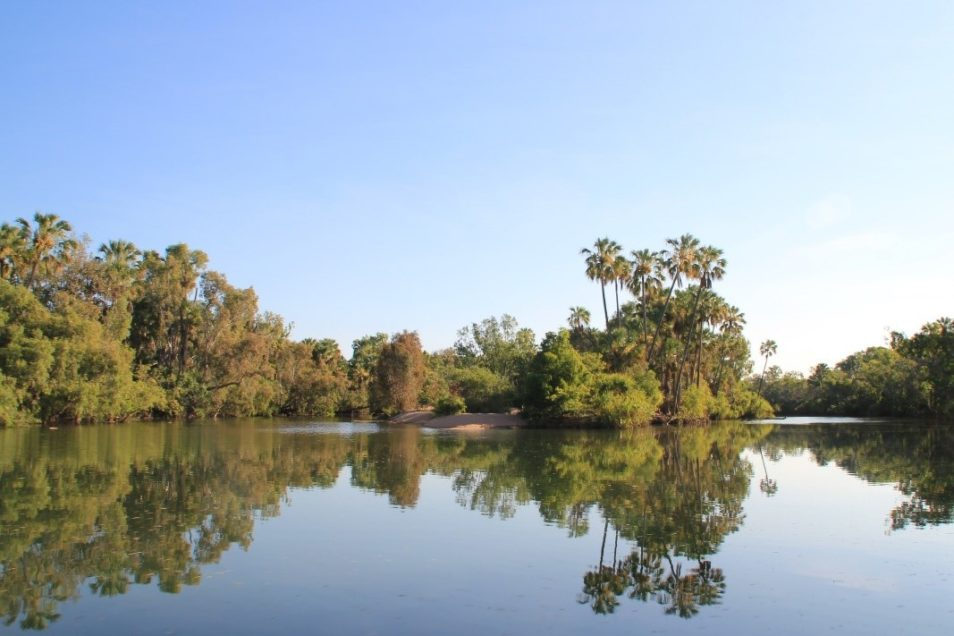 Tranquil river with blue skies and green trees on banks