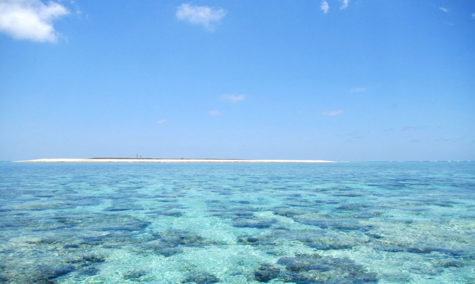 Photo of a distance view of a sandy cay with shallow reefs in the foreground.