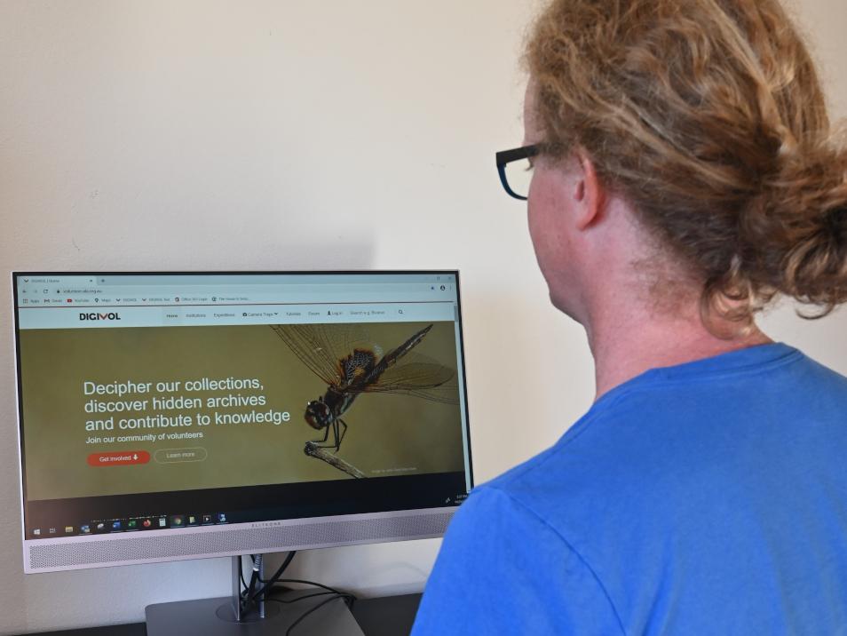 person on a desktop computer