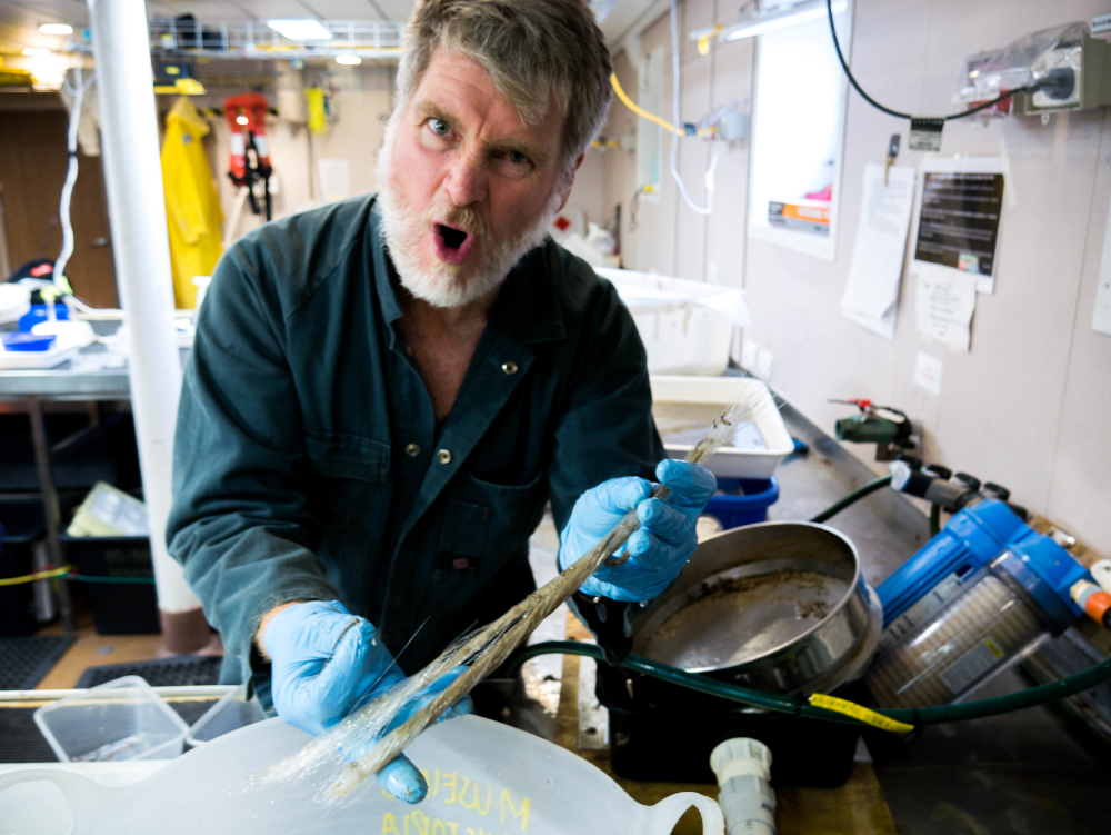 Dr Merrick Ekins with a marine sponge onboard the RV Investigator