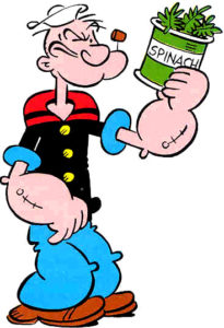 cartoon character Popeye the Sailor Man is holding up a tin with the words spinach written across it. There are green spinach leaves come out of the top of the tin