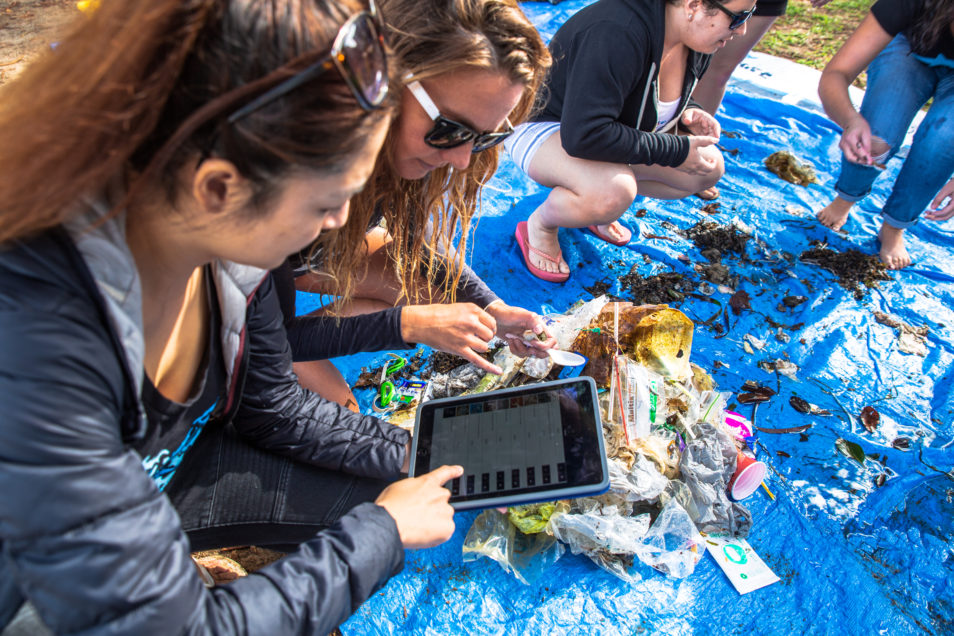 Volunteers sorting debris collected during a Dive Against Debris survey and recording the data via Project AWARE's data reporting app.