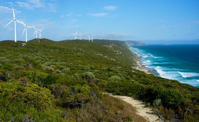 wind farm on coast