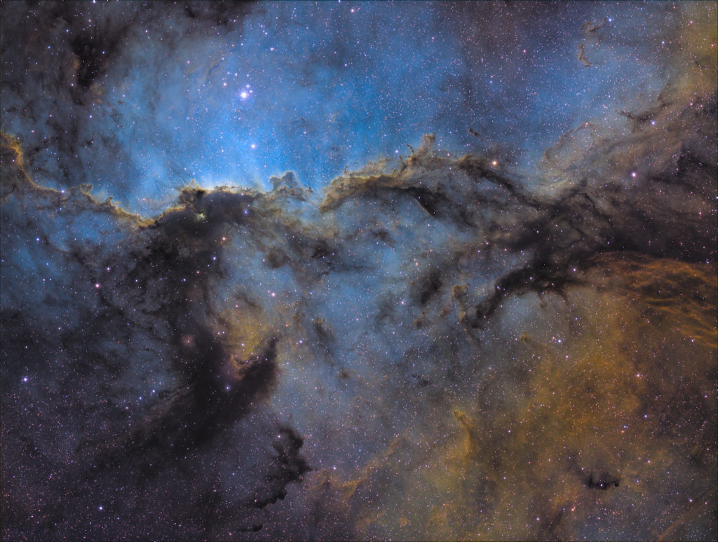 A picture of the galaxy with grey clouds and stars. It's the Deep-Sky Winner of the David Malin Awards.