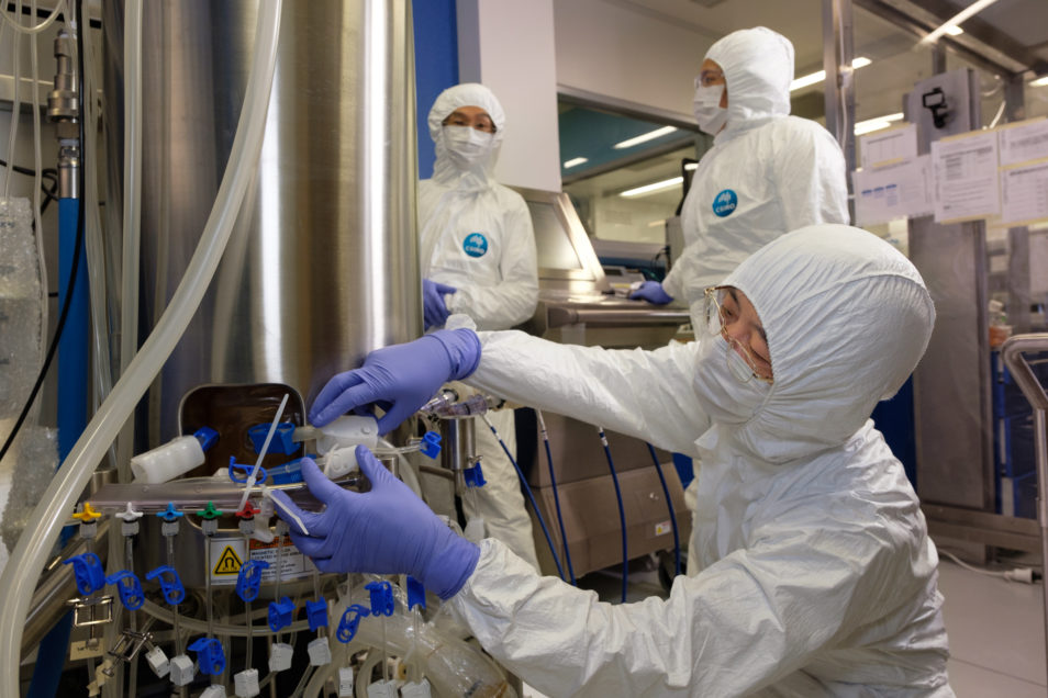 Our team in full PPE working on the COVID-19 vaccine candidate.