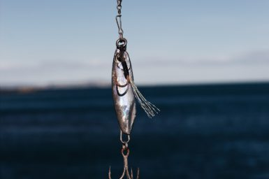 bait fish on a hook in front of a water background