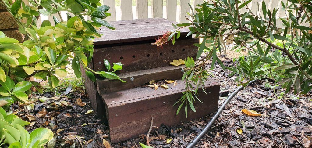 Nesting box for Little Penguins in a residential garden