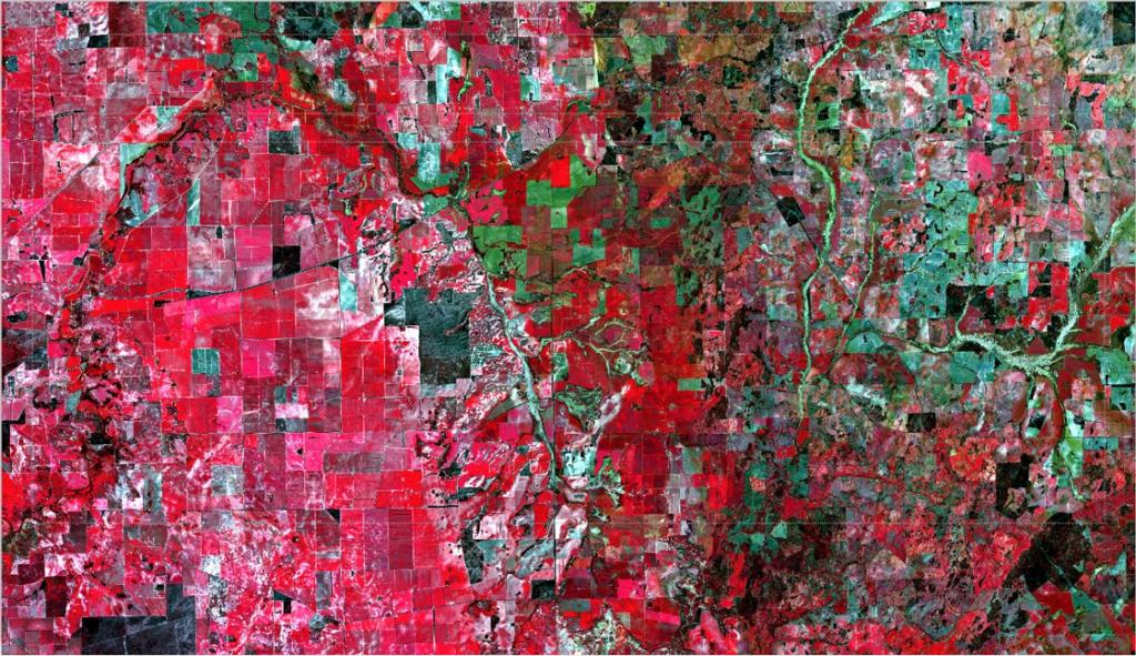 Satellite imagery of paddocks
