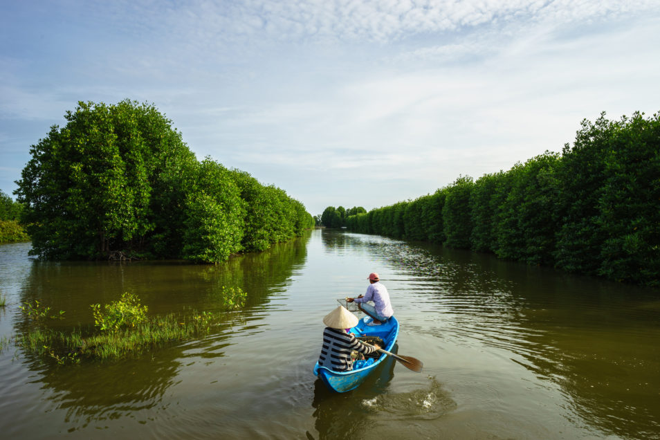 Mangrove forest with two people in a fishing boat in Ca Mau province, Mekong delta, south of Vietnam