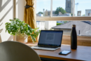 Laptop sitting on desk with plant in front of open window