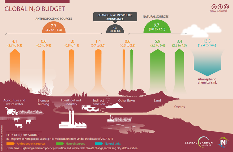 infographic showing the global nitrous oxide budget