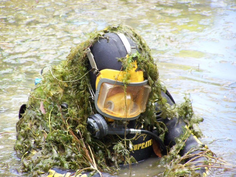 Cabomba weed on diver