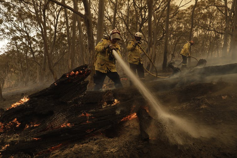 Firefights putting out fires in the bush