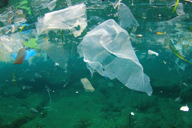 Plastic bag floats in ocean