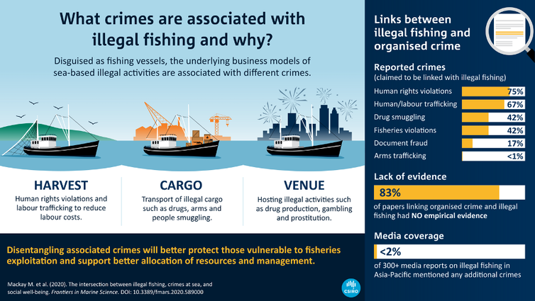 An infographic showing The crimes associated with fisheries at sea. There are separate business models linked to different crimes with minimal evidence of mixing across them. Visual knowledge