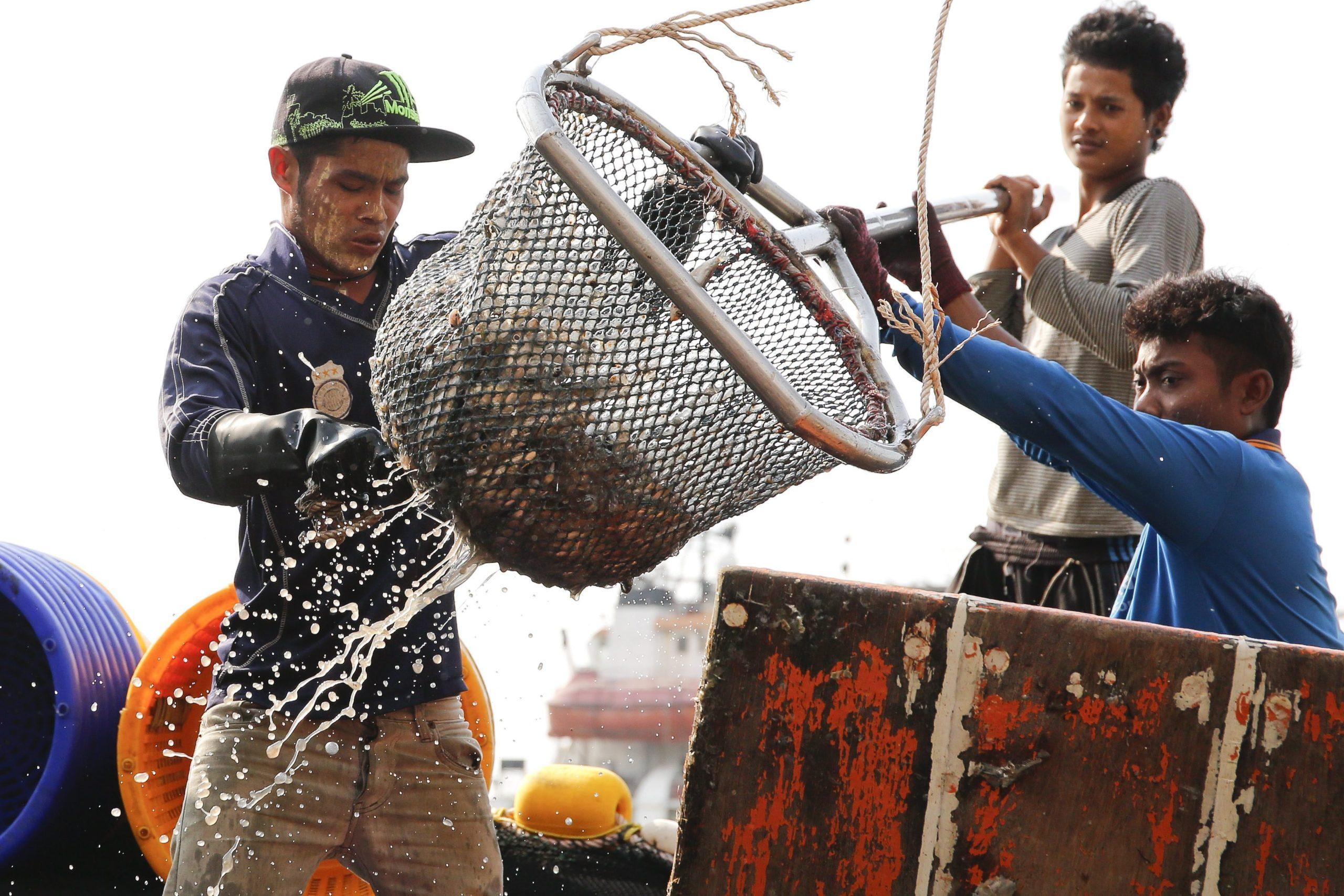 Fishermen getting fish