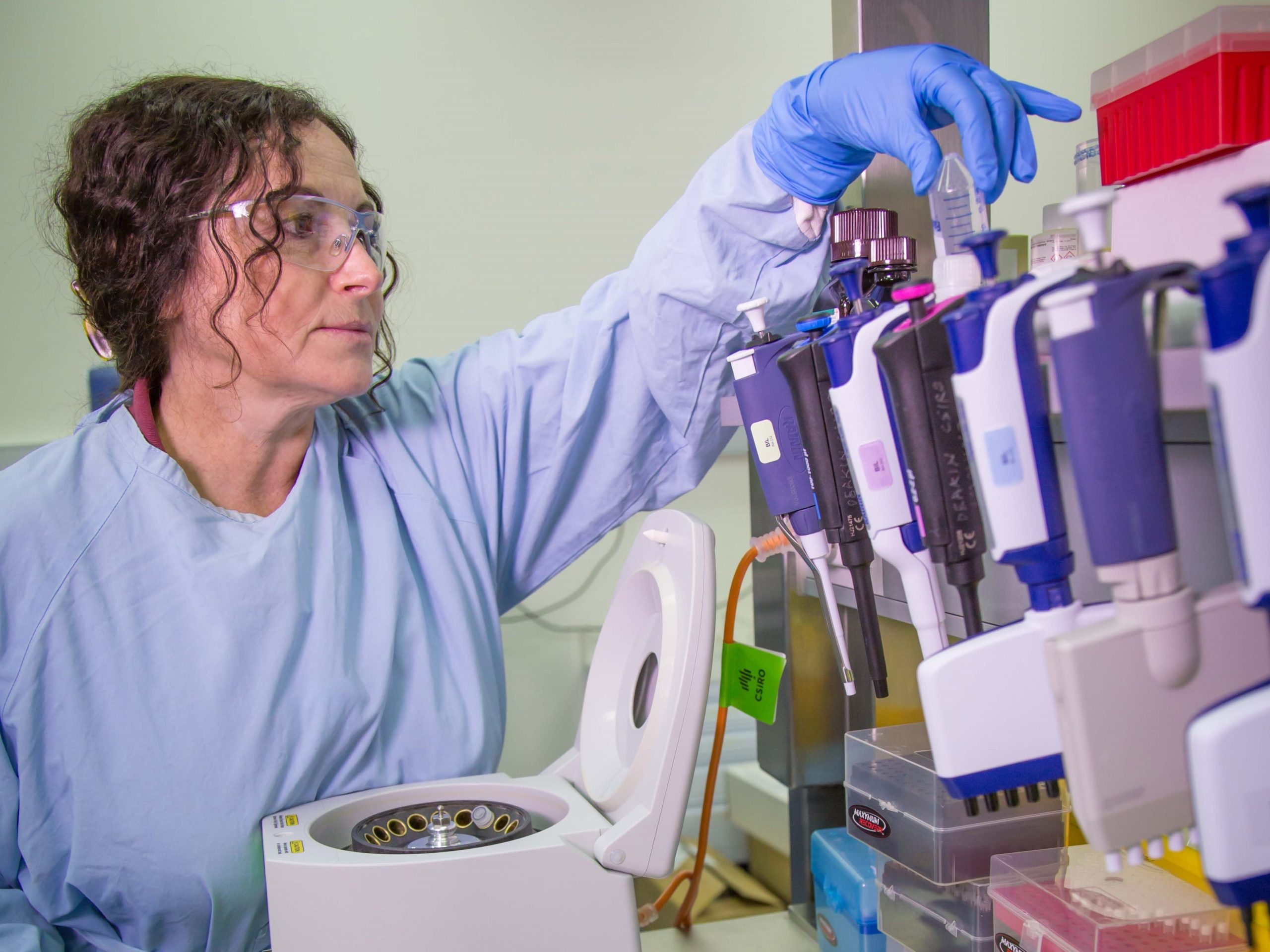 A woman in a blue lab coat working at a lab bench.