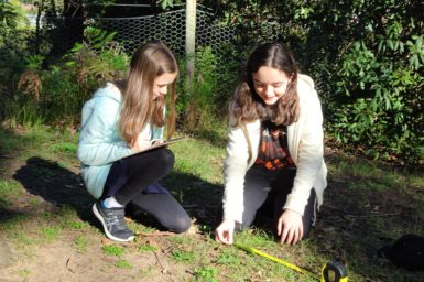 Two citizen scientists recording plot data outside