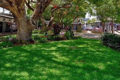 Darwin park, Darwin, Northern Territory