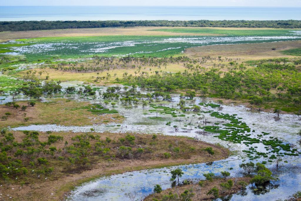 wetlands, inaccessible, Cape York