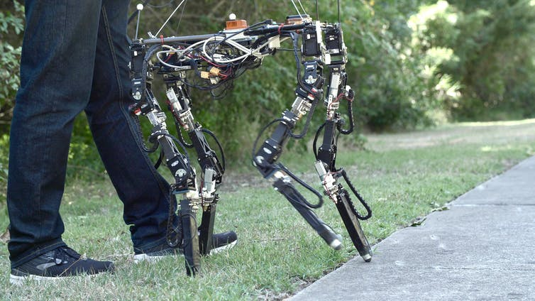 The DyRET roboto walking from path to grass.