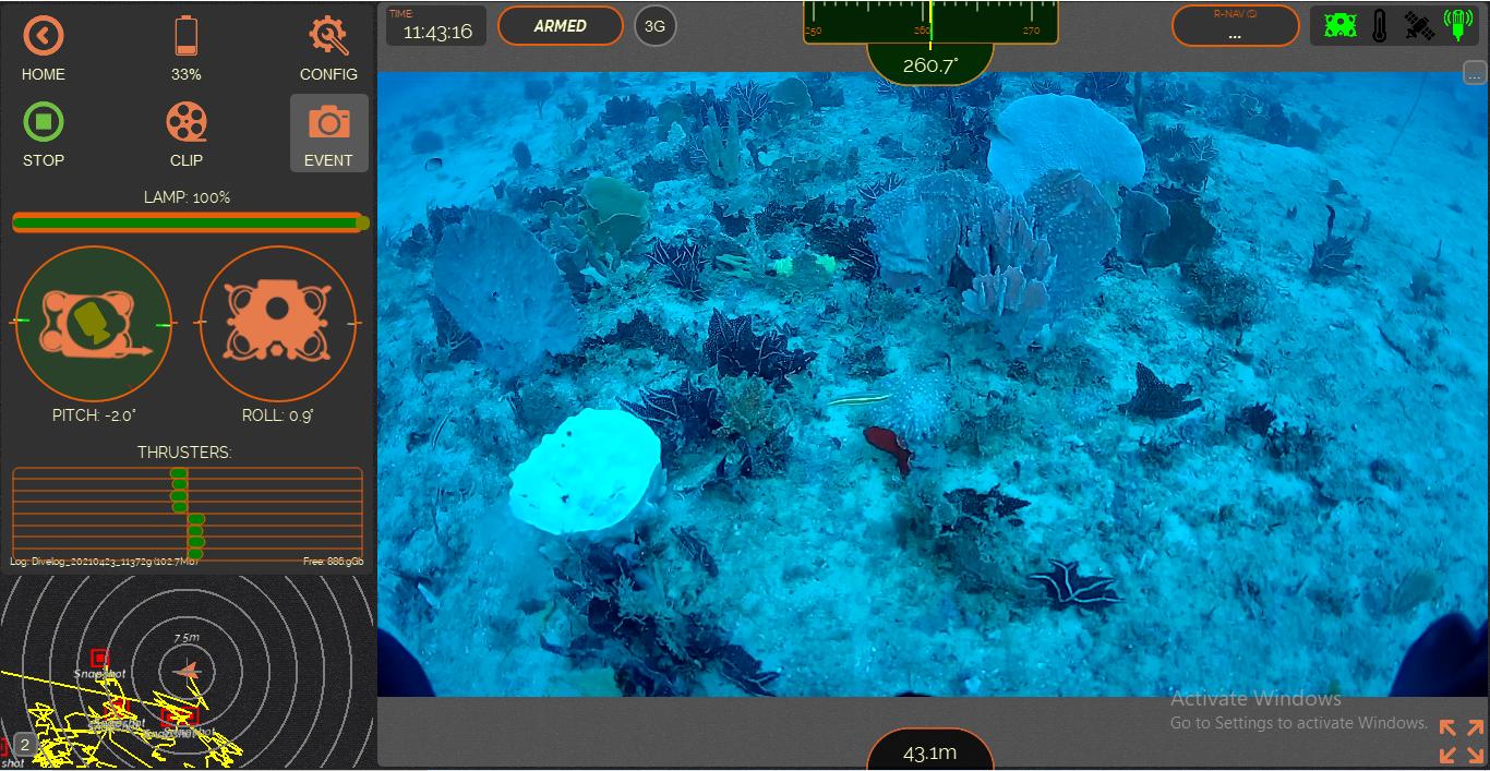 mesophotic habitat or deepwater habitat