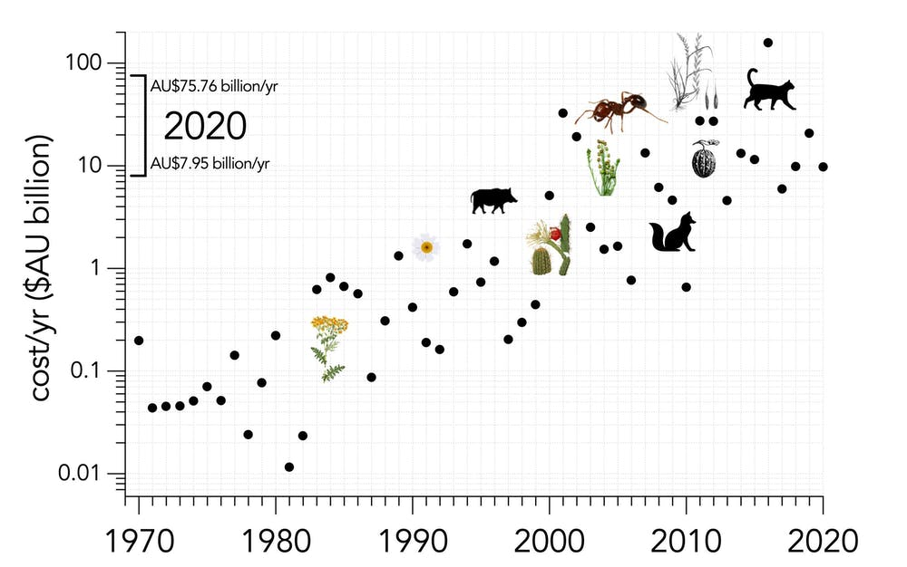 Graph showing the increase in annual costs of invasive species in Australia from 1960 to 2020.