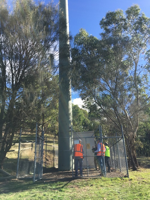 People in high vis gear looking at a telephone pole.